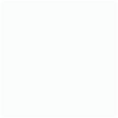 Home Meet The Team Box